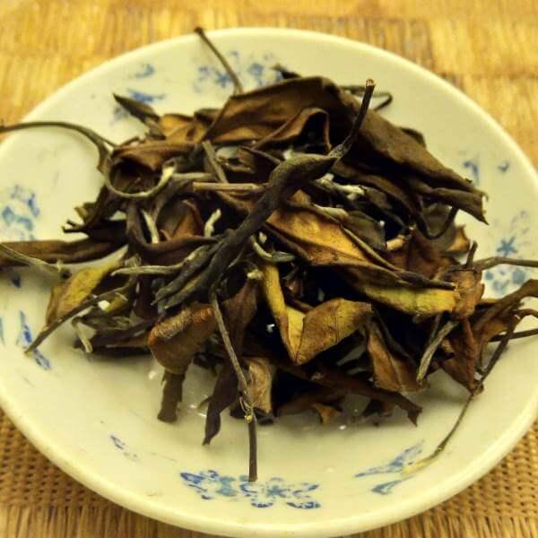 Múltiples infusiones té blanco